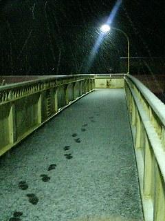 長塚歩道橋(雪)