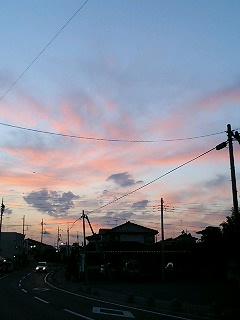 青桃美空20051024