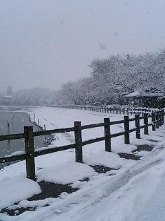 雪の砂沼2